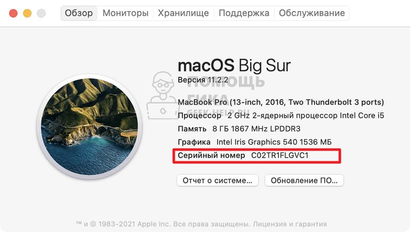Как узнать серийный номер Macbook - шаг 12