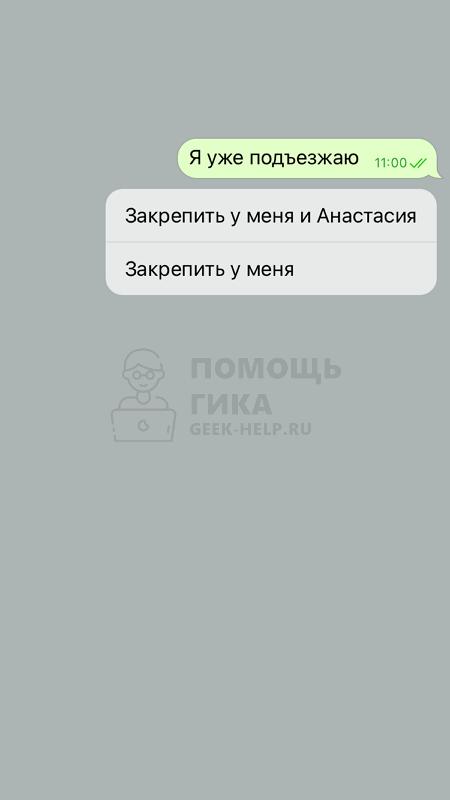 Как в Телеграмме закрепить сообщение в чате на iPhone - шаг 2