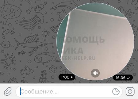 Что нужно знать о записи видео в кружочке в Телеграмм